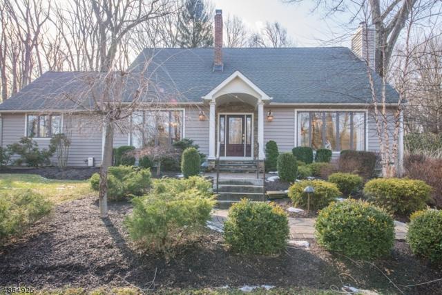 10 Zeek Rd, Denville Twp., NJ 07950 (MLS #3531992) :: SR Real Estate Group