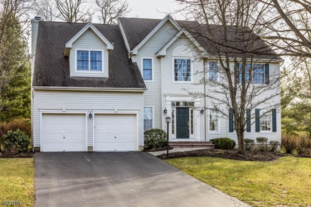 3 Southern Hills Dr, Montgomery Twp., NJ 08558 (MLS #3532018) :: SR Real Estate Group
