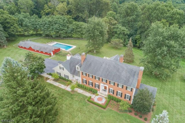 60 Peachcroft Drive, Bernardsville Boro, NJ 07924 (MLS #3532308) :: Coldwell Banker Residential Brokerage