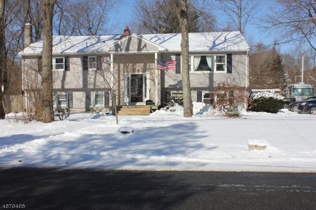 71 Netcong Rd, Mount Olive Twp., NJ 07828 (MLS #3532406) :: The Sue Adler Team
