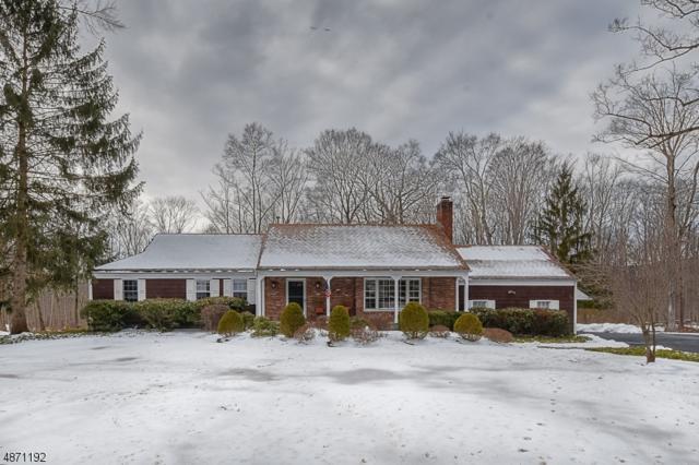 17 Indian Head Rd, Morris Twp., NJ 07960 (MLS #3532414) :: SR Real Estate Group