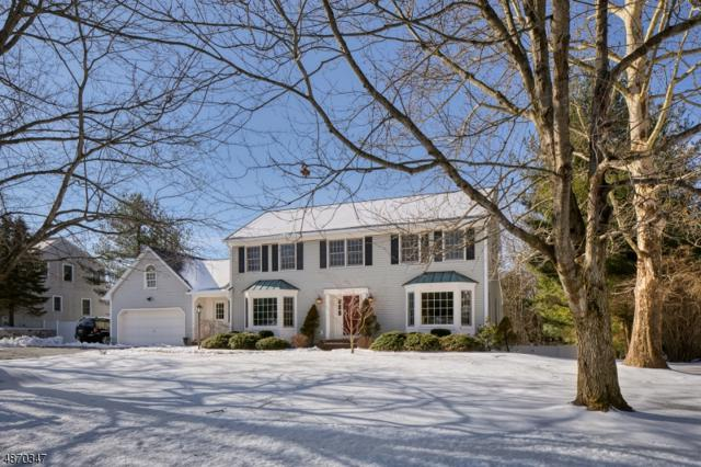 29 Devonshire Ln, Mendham Twp., NJ 07945 (MLS #3532576) :: William Raveis Baer & McIntosh