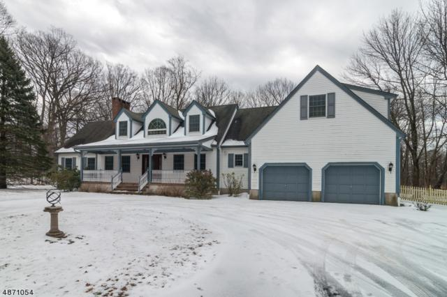 47 Leffler Hill Rd, Raritan Twp., NJ 08822 (#3532673) :: Jason Freeby Group at Keller Williams Real Estate