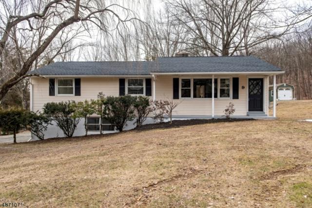 9 Glenn Ter, Fredon Twp., NJ 07860 (#3532683) :: Jason Freeby Group at Keller Williams Real Estate