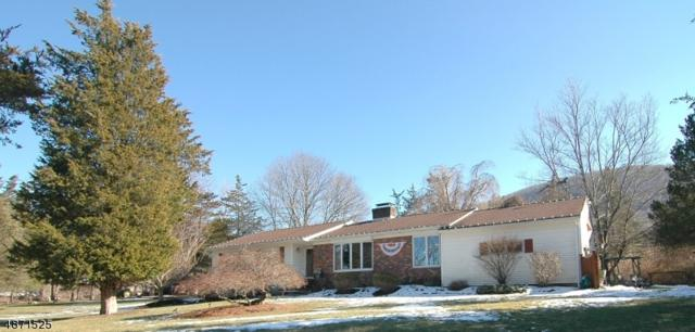 38 Butternut Dr, Vernon Twp., NJ 07462 (#3532697) :: Jason Freeby Group at Keller Williams Real Estate