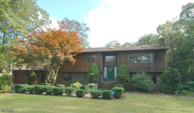23 Sawmill Rd, Vernon Twp., NJ 07460 (MLS #3532718) :: William Raveis Baer & McIntosh
