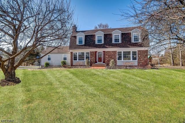 103 E Militia Rd, Readington Twp., NJ 08889 (#3532731) :: Jason Freeby Group at Keller Williams Real Estate