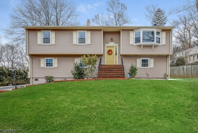 293 Diamond Hill Rd, Berkeley Heights Twp., NJ 07922 (MLS #3532893) :: The Dekanski Home Selling Team