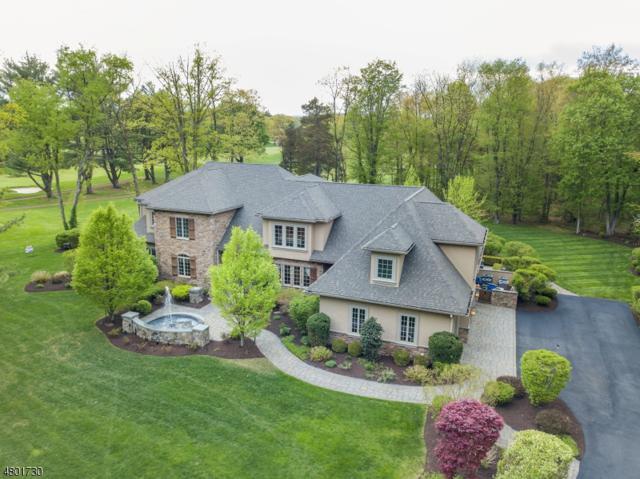 37 Old Boonton Rd, Denville Twp., NJ 07834 (MLS #3532915) :: SR Real Estate Group