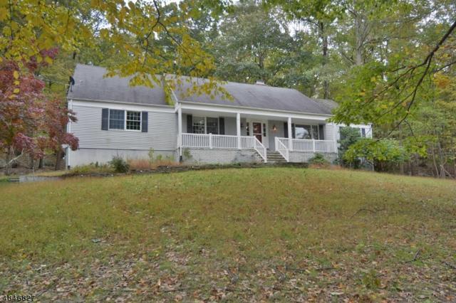 8 Undercliff Rd, Kinnelon Boro, NJ 07405 (MLS #3532927) :: The Dekanski Home Selling Team