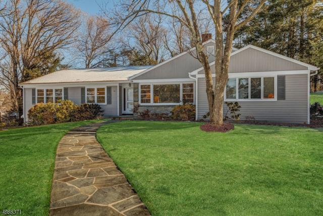 10 Twombly Dr, Summit City, NJ 07901 (MLS #3532969) :: The Dekanski Home Selling Team