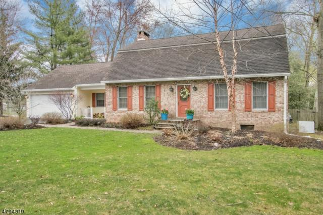 464 Russell Ave, Wyckoff Twp., NJ 07481 (MLS #3533064) :: Radius Realty Group