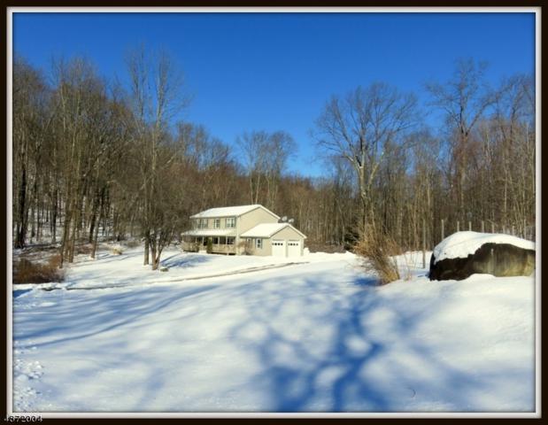 5 Foley Drive, Hampton Twp., NJ 07860 (MLS #3533104) :: Coldwell Banker Residential Brokerage