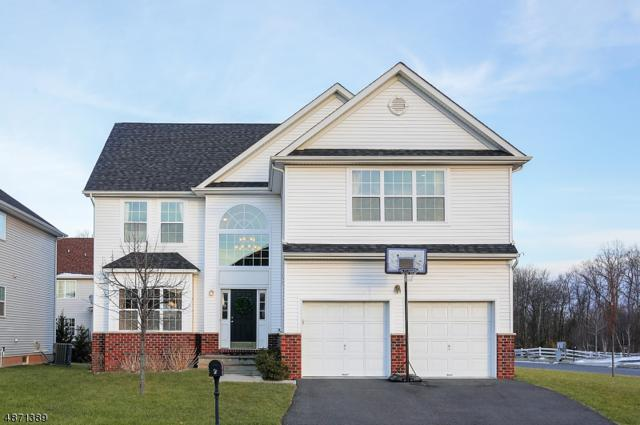 2 Boudinot Ln, Franklin Twp., NJ 08873 (#3533176) :: Group BK