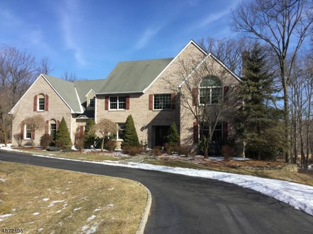 53 Morning Star Dr, Sparta Twp., NJ 07871 (MLS #3533201) :: Coldwell Banker Residential Brokerage