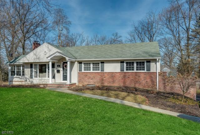 14 Lenape Trl, Chatham Twp., NJ 07928 (MLS #3533336) :: Radius Realty Group