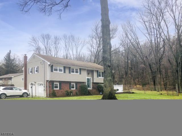 1 Kipling Ln, Scotch Plains Twp., NJ 07076 (MLS #3533368) :: Radius Realty Group