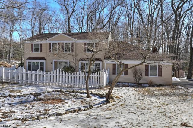 35 Nestling Wood Dr, Washington Twp., NJ 07853 (MLS #3533548) :: SR Real Estate Group
