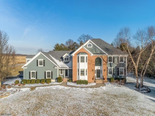 76 Shannon Hill Rd, Bernards Twp., NJ 07920 (MLS #3533674) :: SR Real Estate Group