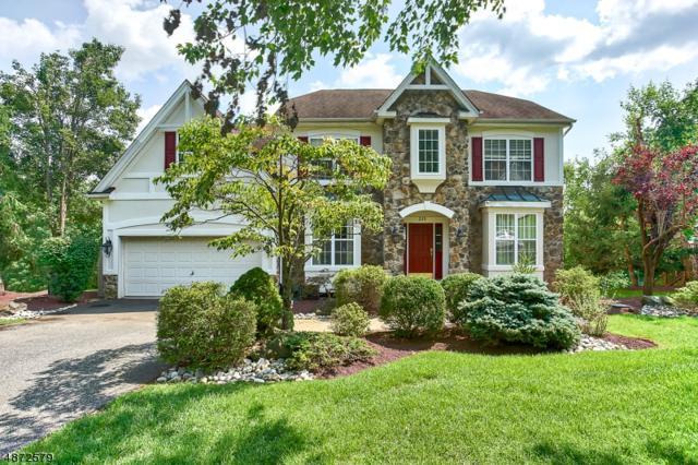 225 West End Ave, Green Brook Twp., NJ 08812 (MLS #3533703) :: SR Real Estate Group