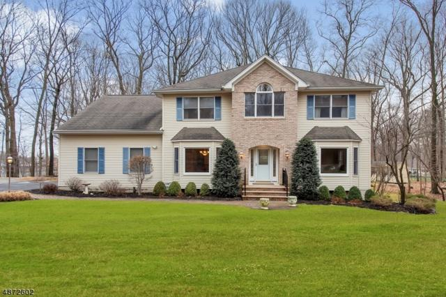 66 Brooklawn Dr, Parsippany-Troy Hills Twp., NJ 07950 (MLS #3533720) :: SR Real Estate Group