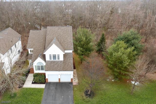 15 Mc Elroy Ln, Montgomery Twp., NJ 08502 (MLS #3533735) :: SR Real Estate Group