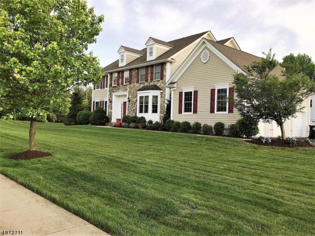 2 David Dr, Hanover Twp., NJ 07981 (MLS #3533741) :: The Sue Adler Team