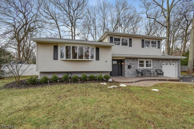 2293 Stocker Ln, Scotch Plains Twp., NJ 07076 (MLS #3534089) :: Pina Nazario