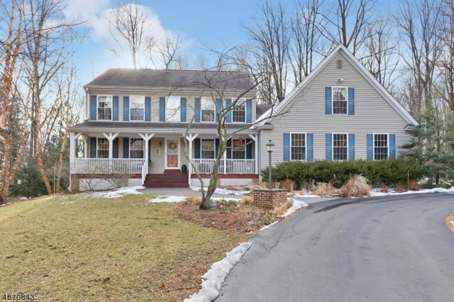 65 Fine Rd, High Bridge Boro, NJ 08829 (MLS #3534180) :: Coldwell Banker Residential Brokerage