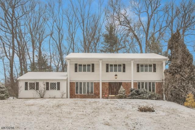 397 Rolling Rock Rd, Springfield Twp., NJ 07081 (MLS #3534218) :: Coldwell Banker Residential Brokerage