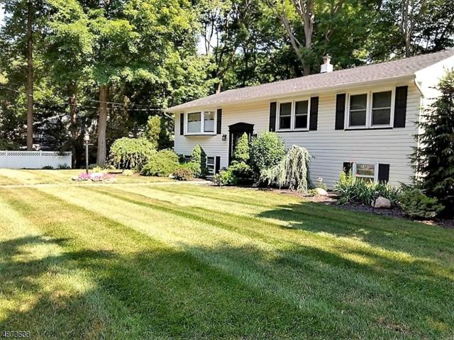 72 Fayson Lakes Rd, Kinnelon Boro, NJ 07405 (#3534408) :: Group BK