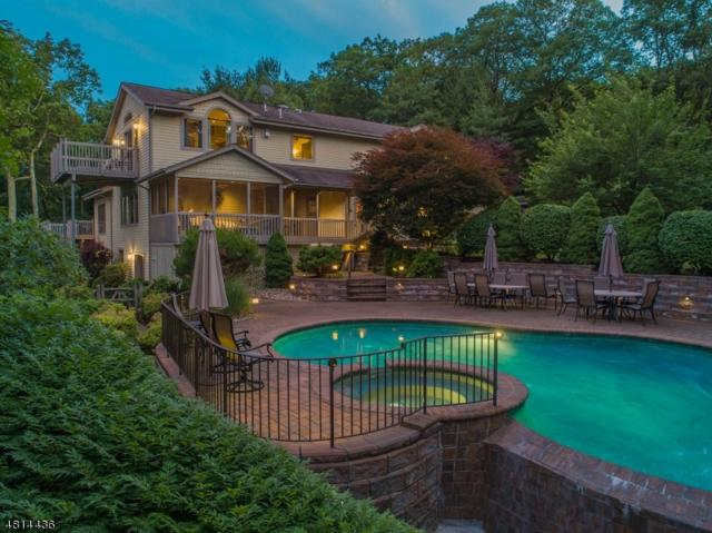 402 Ski Trl, Kinnelon Boro, NJ 07405 (MLS #3536151) :: The Dekanski Home Selling Team