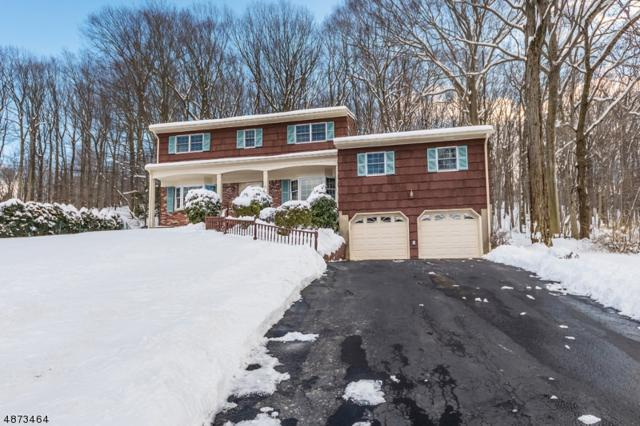 58 Joyce Dr, Roxbury Twp., NJ 07876 (MLS #3536386) :: Team Francesco/Christie's International Real Estate