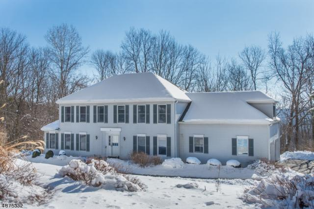 12 Old Township Rd, Mount Olive Twp., NJ 07836 (MLS #3537007) :: William Raveis Baer & McIntosh