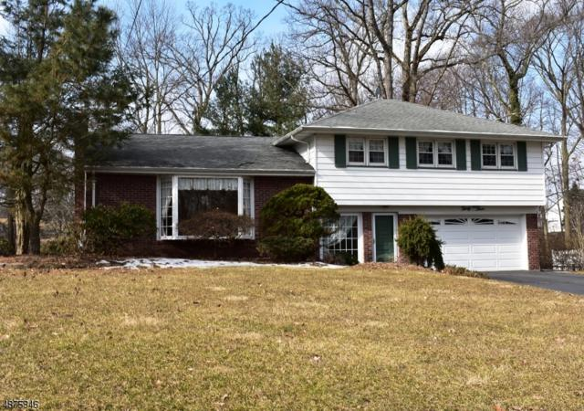 33 Douglas Dr, Montville Twp., NJ 07082 (MLS #3537194) :: William Raveis Baer & McIntosh