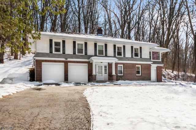 155 Route 46, Washington Twp., NJ 07840 (MLS #3537701) :: The Debbie Woerner Team