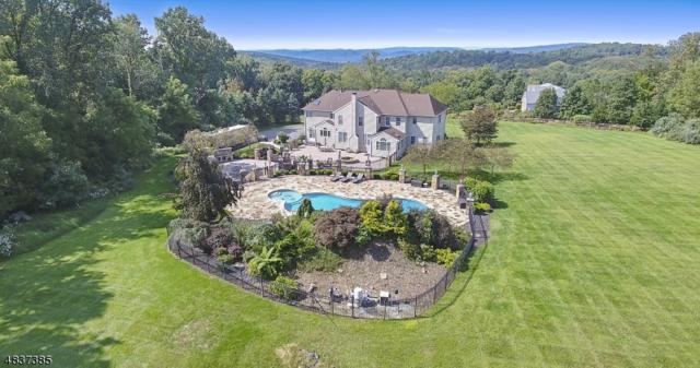 19 Middlesworth Farm Rd, Washington Twp., NJ 07853 (MLS #3537753) :: REMAX Platinum