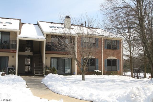 210 Irving Pl, Bernards Twp., NJ 07920 (MLS #3537848) :: SR Real Estate Group