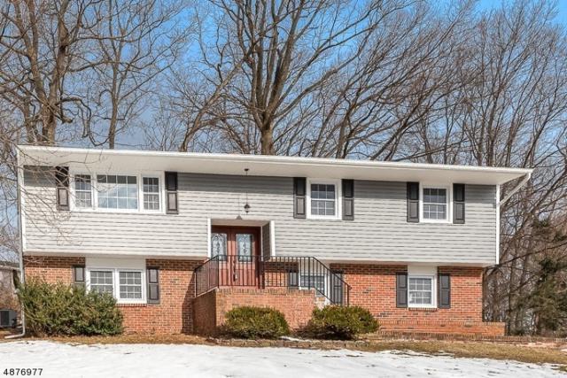 20 Louis Dr, Mount Olive Twp., NJ 07828 (MLS #3538047) :: The Dekanski Home Selling Team