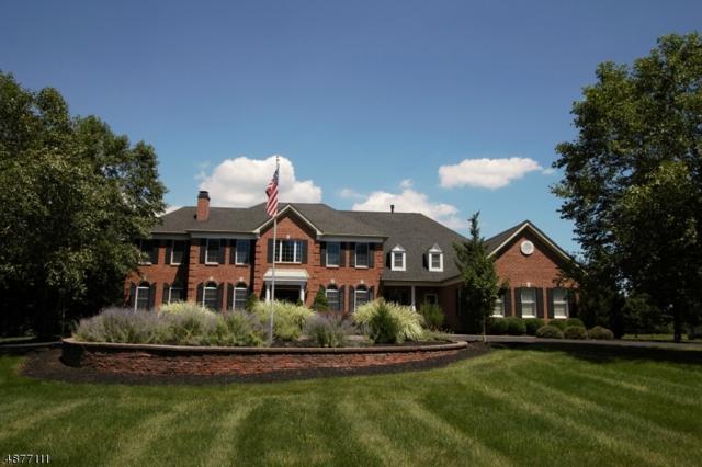 218 Johns Ln, Branchburg Twp., NJ 08853 (MLS #3538160) :: Coldwell Banker Residential Brokerage