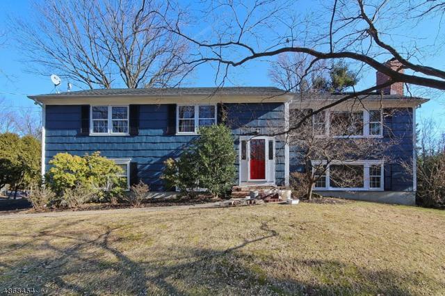 1421 Coles Ave, Mountainside Boro, NJ 07092 (MLS #3538239) :: The Dekanski Home Selling Team
