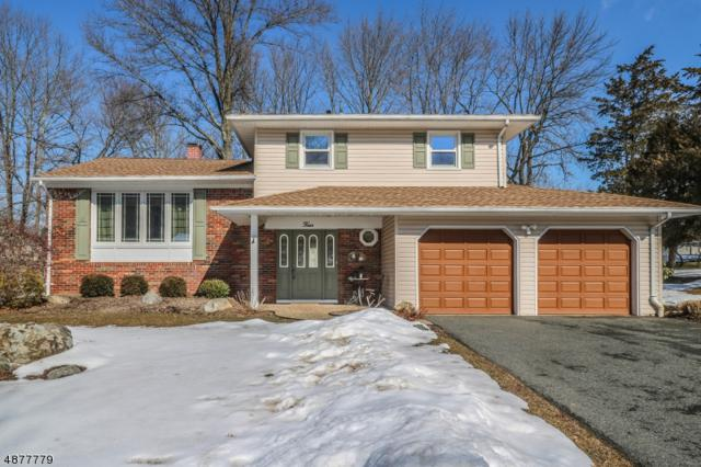 4 Andre Dr, Roxbury Twp., NJ 07876 (MLS #3538308) :: Team Francesco/Christie's International Real Estate