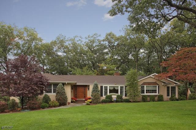 1050 Wyandotte Trl, Westfield Town, NJ 07090 (MLS #3538386) :: SR Real Estate Group