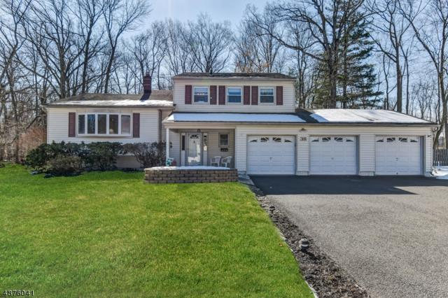 38 Greenbriar Dr, Berkeley Heights Twp., NJ 07922 (MLS #3538411) :: The Sue Adler Team