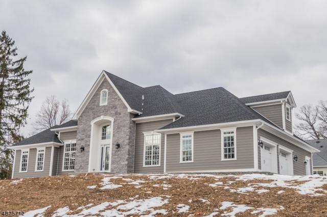 9 Wyndmoor Dr, Morris Twp., NJ 07960 (MLS #3538417) :: Coldwell Banker Residential Brokerage
