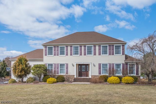 211 Woods End, Bernards Twp., NJ 07920 (MLS #3538469) :: Coldwell Banker Residential Brokerage