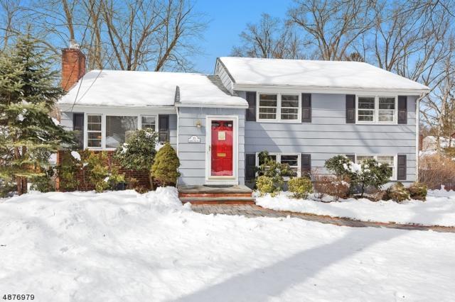 35 Coleman Ave East, Chatham Boro, NJ 07928 (MLS #3538501) :: Team Francesco/Christie's International Real Estate