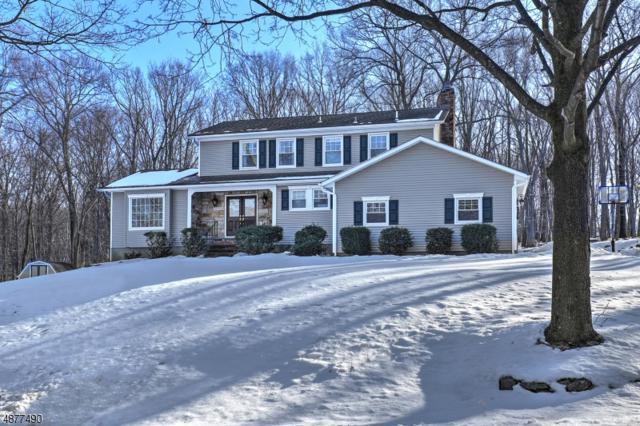 55 Ann Rd, Washington Twp., NJ 07853 (MLS #3538786) :: SR Real Estate Group