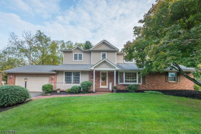 43 Unneberg Ave, Roxbury Twp., NJ 07876 (MLS #3538830) :: Team Francesco/Christie's International Real Estate