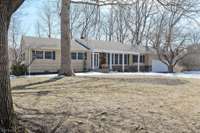 10 Holly Dr, Randolph Twp., NJ 07869 (MLS #3539006) :: Coldwell Banker Residential Brokerage